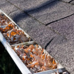 gutter cleaning NJ, PA, DE